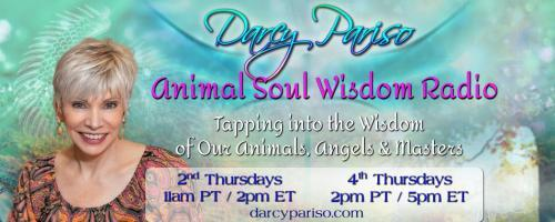 Animal Soul Wisdom Radio: Tapping into the Wisdom of Our Animals, Angels and Masters with Darcy Pariso : A New Beginning: Life Coaches, Human & Animal! with guest Peggy Willms!