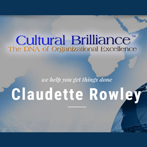 Introducing Cultural Brilliance™ The DNA of Organizational Excellence