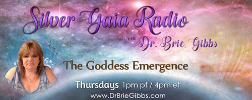 Silver Gaia Radio with Dr. Brie Gibbs - The Goddess Emergence:  Chiropractic & Spiritual Energy how they work together